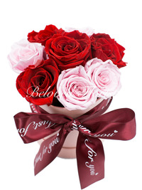 Valentine's Day - Preserved Flowers / Roses