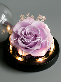 Single Purple Preserved Rose in Glass Dome