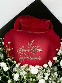 ''I Love You Forever'' Rose in box